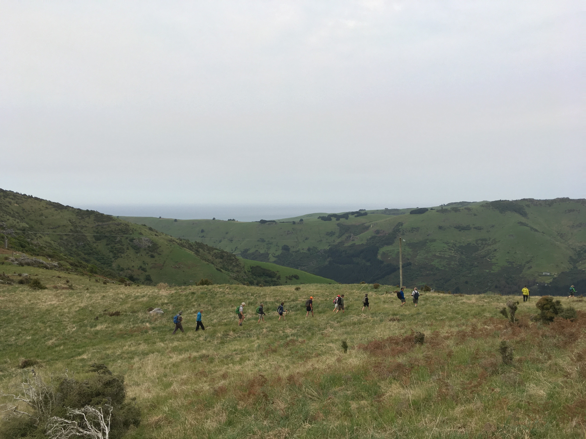 Josef Langer Charitable Trust New Zealand - Walking Festival, Akaroa, Banks Peninsula (27)